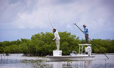 The Beginner Guide to Saltwater Fishing