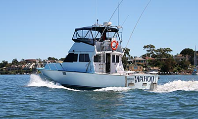 Parramatta River Fishing Trips